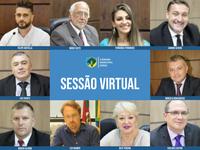 Câmara aprova 16 projetos em sessão virtual