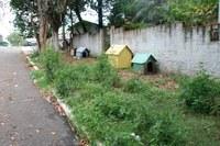 Casinhas de cachorro instaladas na calçada da La Salle preocupam vereador Luiz Duarte