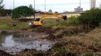 Vereador Márcio Alemão questiona prefeitura sobre poda de vegetação em área de reprodução de aves